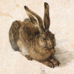 young-hare