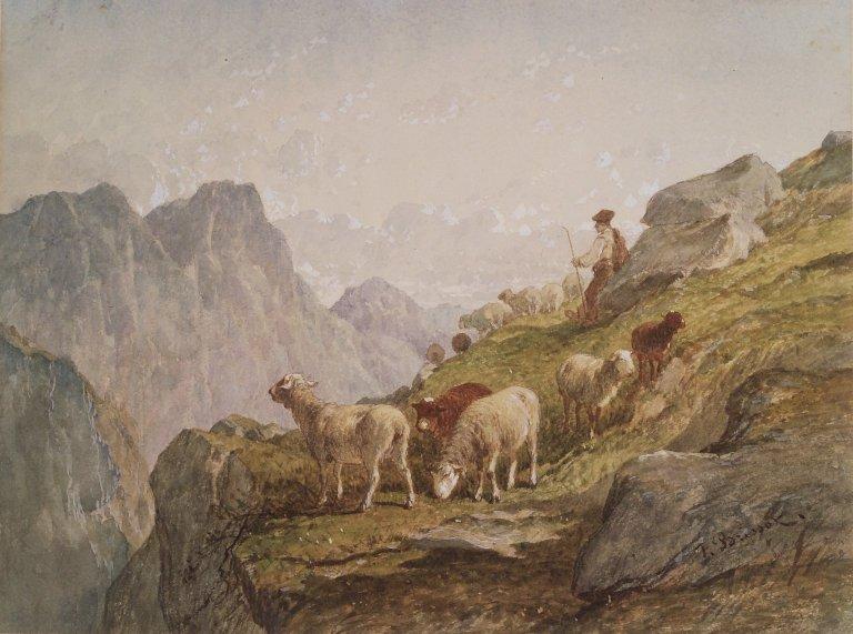 shepherd-rock